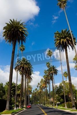 Ulice Beverly Hills w Kalifornii