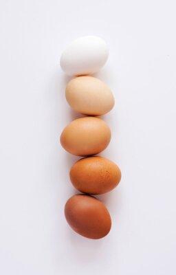 Fototapeta Uova di różnorodne sfumature w fila su sfondo bianco. Scala di colori