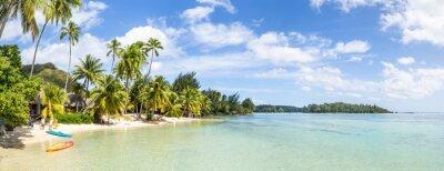 Fototapeta Urlaub am Palmenstrand w Den Tropen