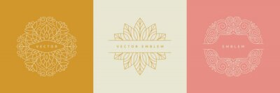 Fototapeta Vector design templates in simple modern style with copy space for text, flowers and leaves - wedding invitation backgrounds and frames, social media stories wallpapers