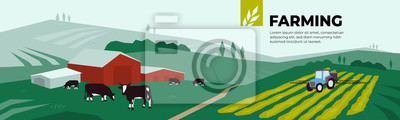 Fototapeta Vector illustration of farm land, pasture, cows, agricultural buildings, irrigation tractor spraying on field. Design for farming, livestock company. Template for banner, annual report, print, website