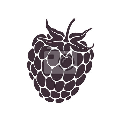 Fototapeta Vector illustration. Silhouette of blackberry or raspberry fruit with stem. Healthy diet and vegetarian food. Decoration for packaging, menus, showcases. Isolated  pattern on white background