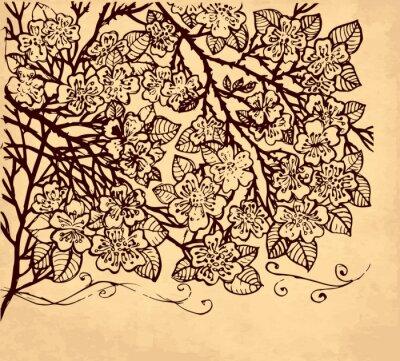 Fototapeta Vector strony rysowane ilustracji z kwiatami