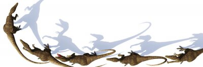 Fototapeta Velociraptor group, dinosaurs from the Cretaceous period, isolated on white background