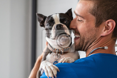 Fototapeta Vet cuddling pet dog