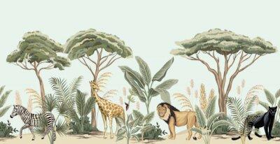 Fototapeta Vintage african tree, banana tree, plant, lion, giraffe, zebra, panther animal floral border blue background. Exotic safari wallpaper.