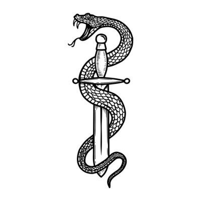 Fototapeta Vintage design with snake on dagger. For poster, banner, emblem, sign, logo. Vector illustration