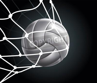 Fototapeta Volleyball_Ball Drawing
