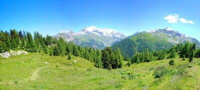 Fototapeta Vue Alpes