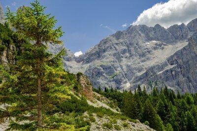 Fototapeta W drodze do Alta Via 1, Włochy