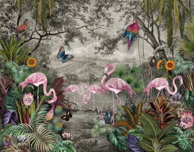 Fototapeta wallpaper jungle and tropical forest banana palm and tropical birds, old drawing