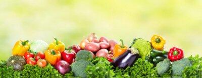 Fototapeta Warzywa na zielonym tle.