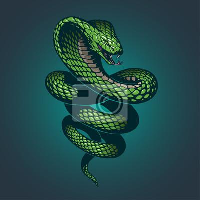 Fototapeta wąż ilustracji