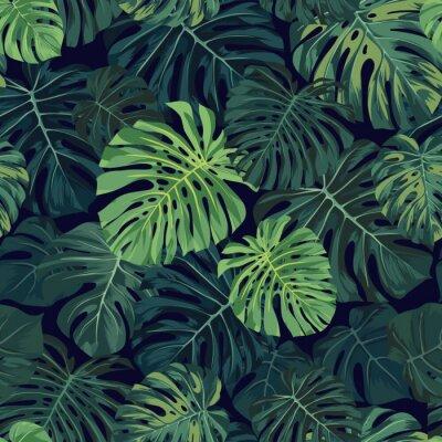 Fototapeta Wektor bez szwu deseń z zielonym tropikalnych liści palmowych monstera na ciemnym tle. Egzotyczne hawajski wzór tkaniny.