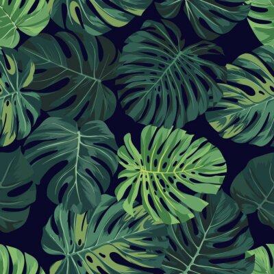 Fototapeta Wektor bez szwu z zielonych liści palmowych monstera na ciemnym tle. Lato projektowania tropikalnych tkaniny.