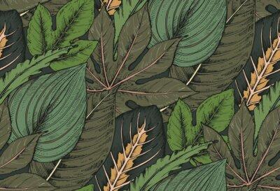 Fototapeta Wektor bezszwowych deseniu z kompozycji ręcznie rysowane roślin tropikalnych