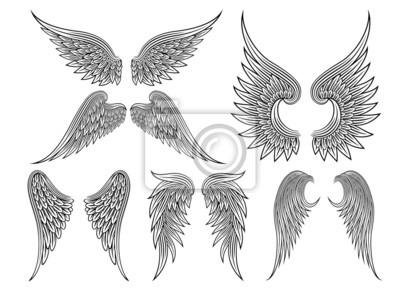 Fototapeta Wektor heraldyczny skrzydła lub anioł