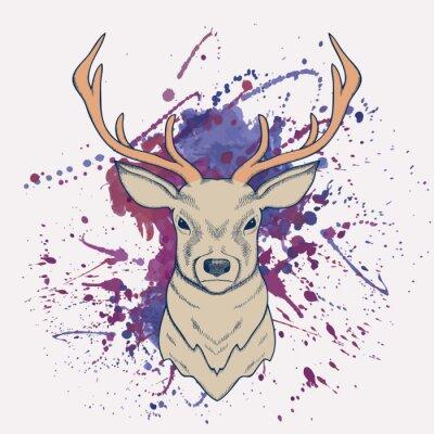 Fototapeta Wektor ilustracja jeleni z odrobiną akwareli