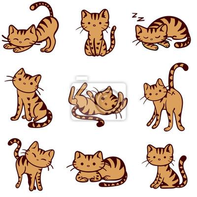 Fototapeta Wektor ilustrowany pomarańczowy pręgowany kotów