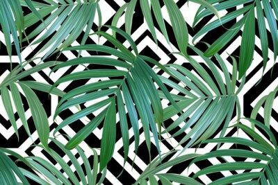 Fototapeta Wektor liści palmowych. Tropikalnych liści bez szwu. Tło liści bananów. Projekt egzotyczny izolowane. Hawajski druk. Rośliny dżungli. Ilustracja letnich.