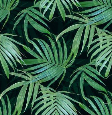 Fototapeta Wektor Tropikalna palmy pozostawia bezszwowych deseń. Floral egzotycznych Hawaiian tle. Kwitnienie elementów. Ręcznie malowane rośliny dżungli. Idealny do tkanin, tapet, papier pakowy, tkaniny, poście