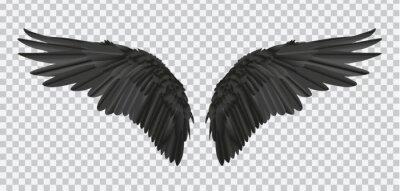 Fototapeta Wektorowa para czarni realistyczni skrzydła na przejrzystym tle