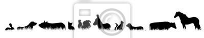 Fototapeta Wektorowa sylwetka zwierzę gospodarskie w trawie na białym tle.