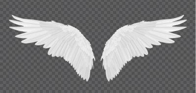 Fototapeta Wektorowe realistyczne skrzydła anioła wyizolowanych na przezroczyste tło