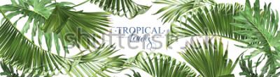 Fototapeta Wektorowi horyzontalni tropikalni liści sztandary na białym tle. Egzotyczny wzór botaniczny na kosmetyki, spa, perfumy, produkty do pielęgnacji zdrowia, aromat, zaproszenie na ślub. Najlepsze jako ban