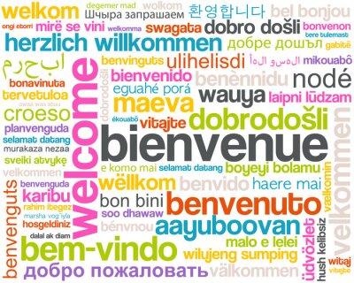 Fototapeta welcome - strona d'Accueil - bienvenue