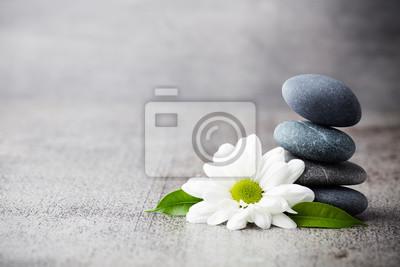 Wellness background.