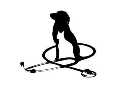 Fototapeta weterynaria phonendoscope logo