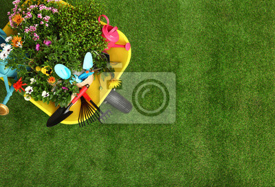 Fototapeta Wheelbarrow with flowers and gardening tools on grass, top view. Space for text