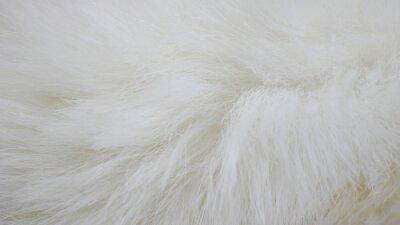 Fototapeta white fabric background, white cloth and soft white fur
