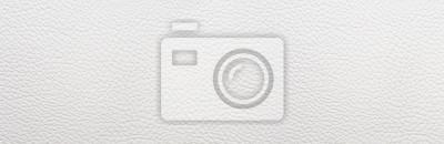 Fototapeta White leather background. Panorama.