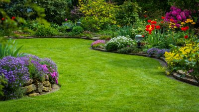 Fototapeta Widok na ogród i rośliny zielone