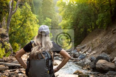 Fototapeta Widok od behind kobieta wycieczkuje blisko halnego strumienia podczas gdy na wakacje. Zamyka w górę szczerej fotografii aktywna kobieta cieszy się outdoors z pięknym scenicznym położeniem
