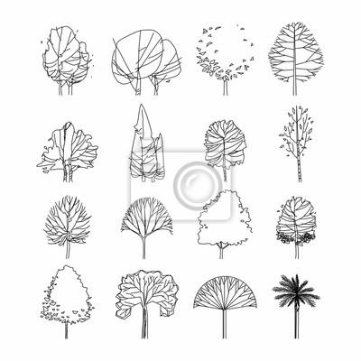 Fototapeta Widok z boku, zestaw elementów drzewa graficznego zarys symbol dla architektury i krajobrazu rysunku. Ilustracji wektorowych