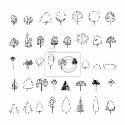 Fototapeta Widok z góry i widok z boku, zestaw elementów drzewek graficznych symbol konspektu dla rysunku architektury i krajobrazu. Ilustracji wektorowych