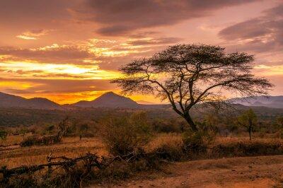 Fototapeta Wieczorny widok na terytorium plemienia Bana