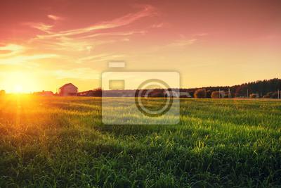 Fototapeta Wiejski krajobraz z pięknym gradientowym wieczór niebem przy zmierzchem. Zielone pole i wieś na horyzoncie