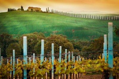 Fototapeta Wiejskiej wsi w regionie Toskania, Włochy