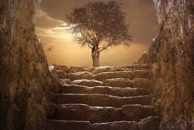 Fototapeta Wielki Krajobraz z drzewem