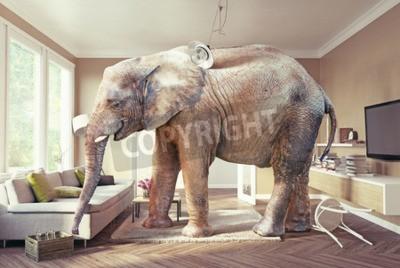 Fototapeta Wielkie słonie i przypadku piwa w salonie. Koncepcja 3D