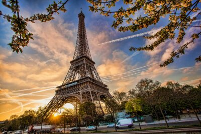 Fototapeta Wieża Eiffla przed wschodem słońca w Paryżu, Francja