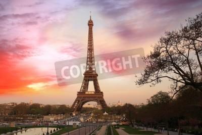 Fototapeta Wieża Eiffla w wieczór, Paryż, Francja