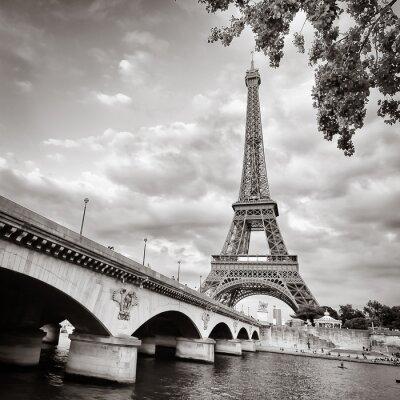 Fototapeta Wieża Eiffla widok z rzeki Seine formacie kwadratowym