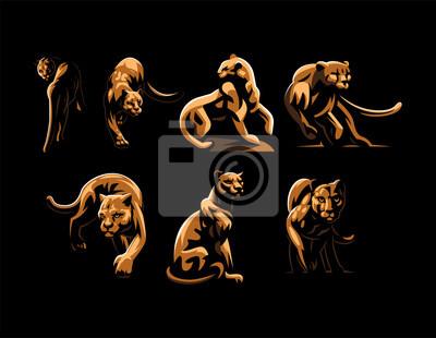 Fototapeta Wild cats. Jaguar, cheetah, leopard, panther.