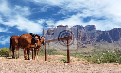 c82c2eeec Fototapeta Wild West Town Konie przywiązany do postu - Koń przywiązany do  słupka w miasteczku kowbojskim