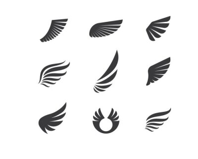 Fototapeta wing logo symbol icon vector illustration